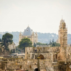 Pictures from the Holy Land 2