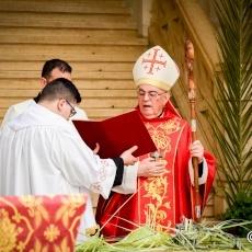 احتفال أحد الشعانين من كوكاتدرائية البطريركية اللاتينية – القدس