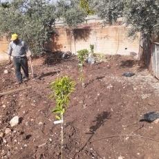 La communauté chrétienne de Taybeh se rassemble au profit des personnes âgées pendant le confinement