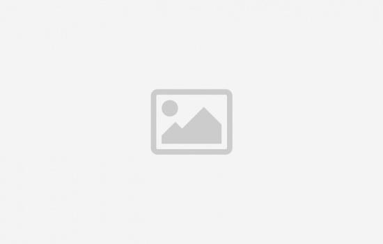 نشرة أخبار الأرض المقدسة ١٦ حزيران ٢٠١٧
