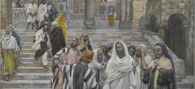 Meditation of Archbishop Pizzaballa: XXXIII Sunday in Ordinary Time, Year C